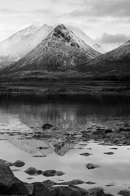 Peak Reflection