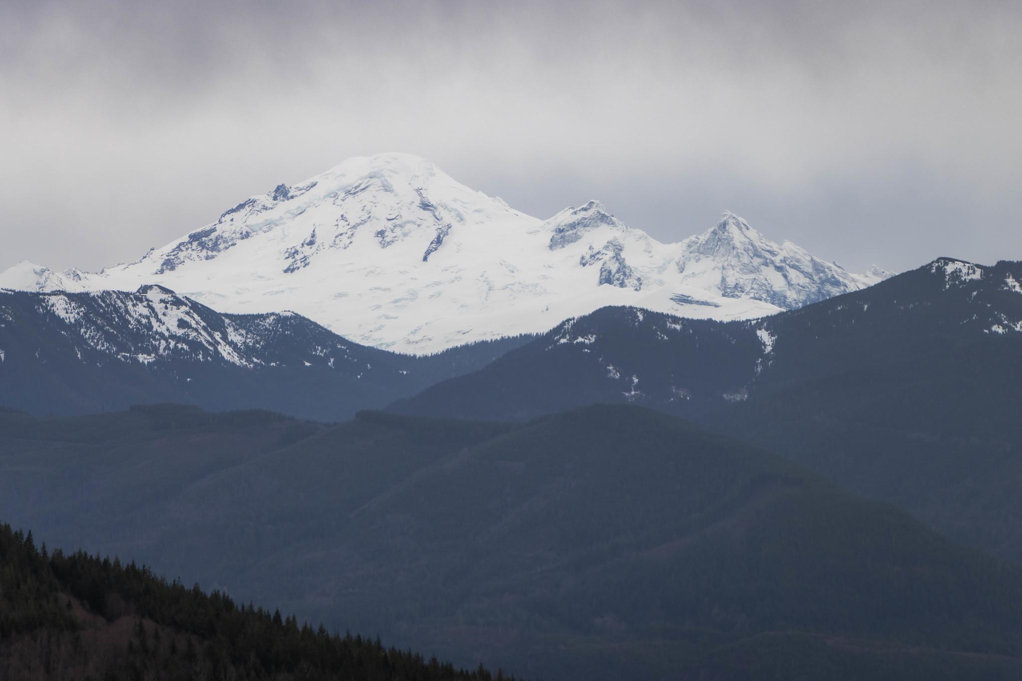Hillside view of Mount Baker