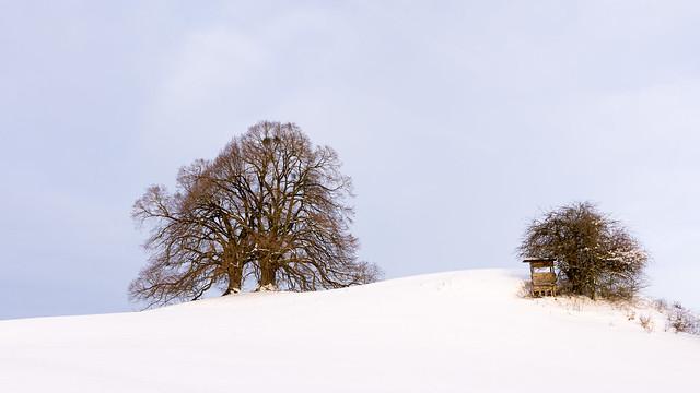 Winters tale in Bavaria