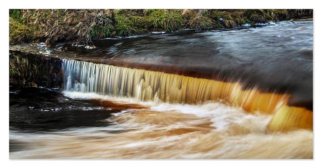 Golden Flow