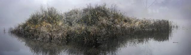 Island in lake Lonneker