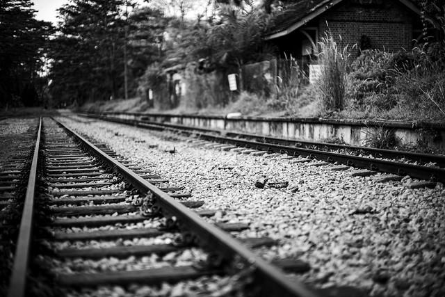 Abandoned Raiway Track