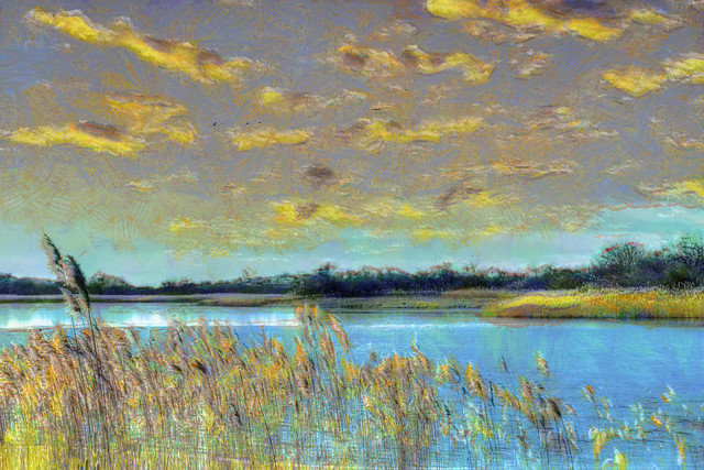 Reeds and Pond - Version 2