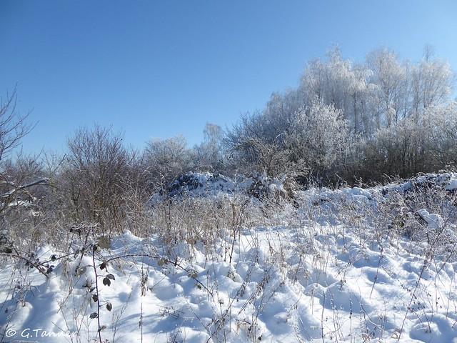 Halle im Schnee