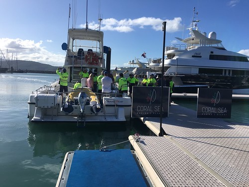 Training Pumps Docking | by VMRWhitsundays