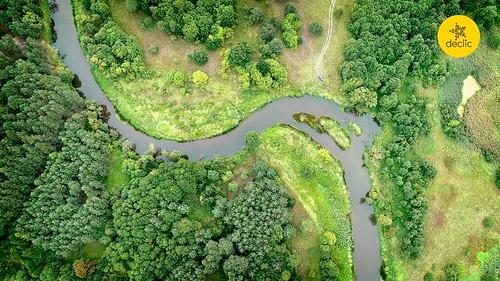 Râuri: lăsați procurorii să facă anchete