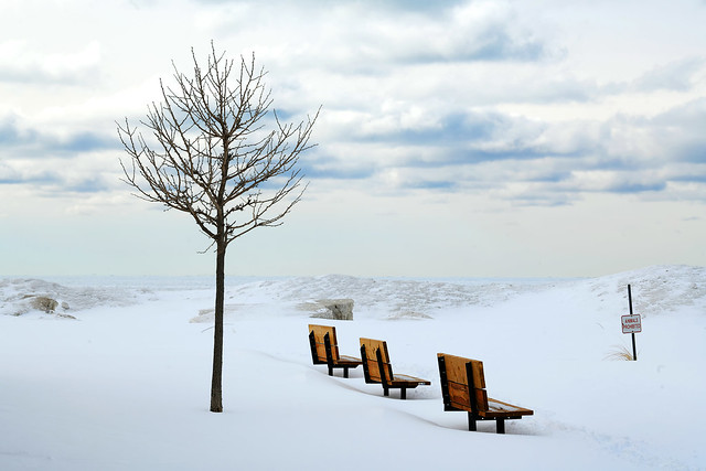 Three Benches at the Beach