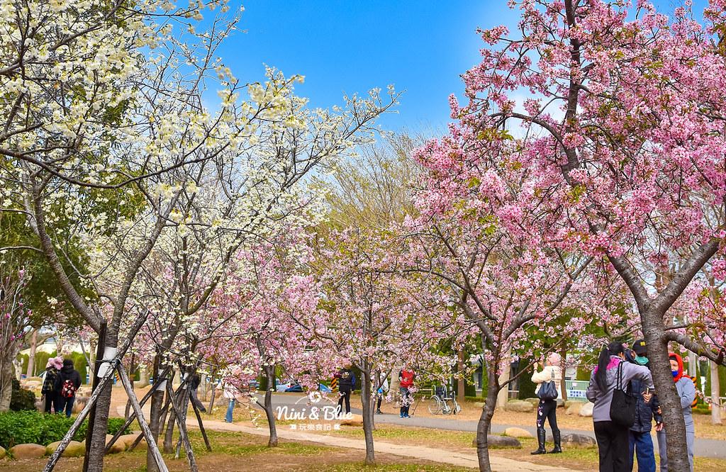 2021中科崴立櫻花公園23