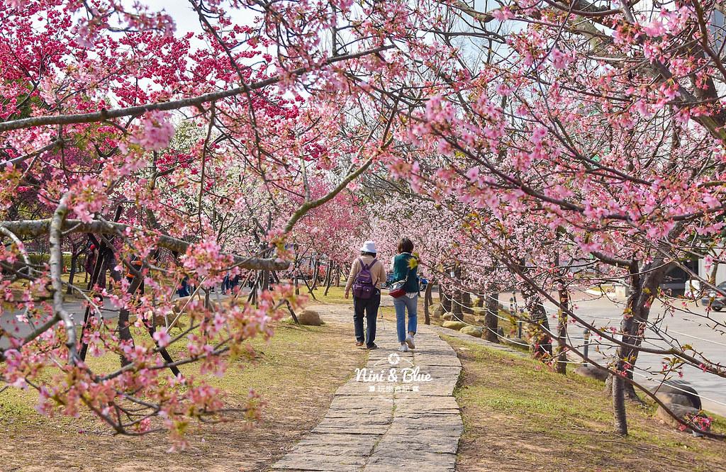 2021中科崴立櫻花公園15