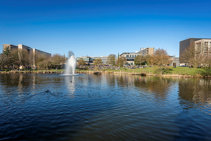 University of Bath campus building in the background with the pond n the foreground on a bright, sunny Summer's day