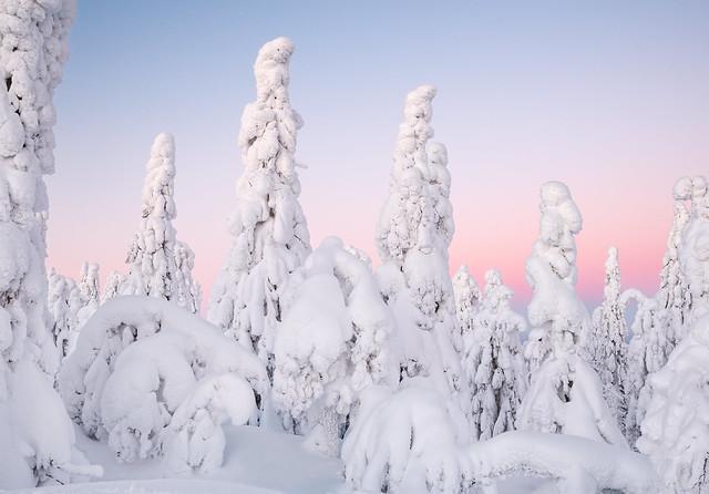 Frozen figures