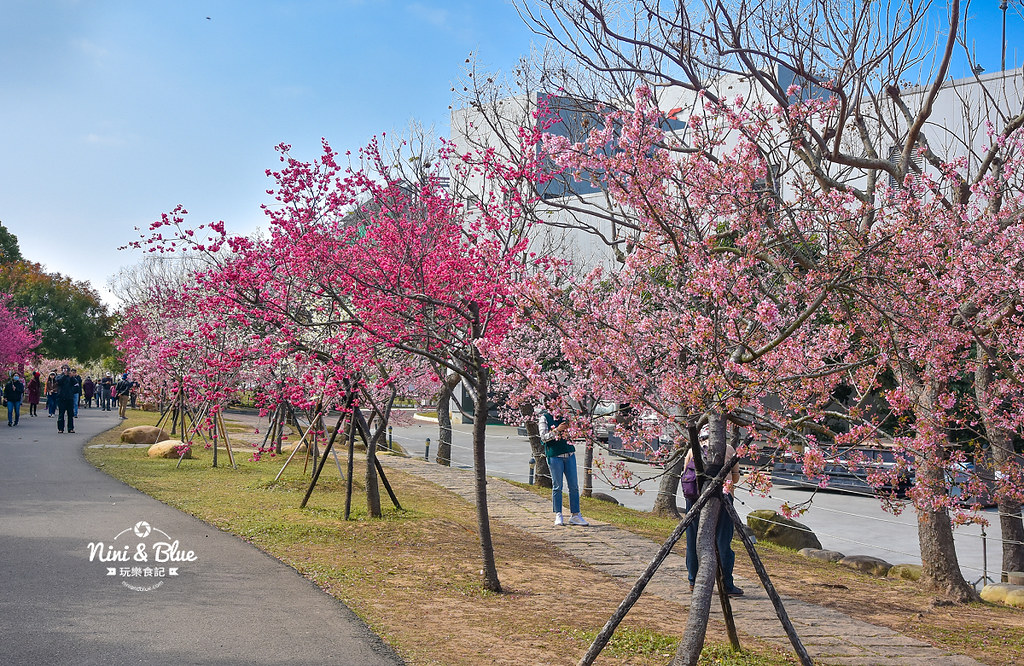 2021中科崴立櫻花公園13