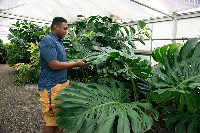 Johnathan Hampton works in a greenhouse.
