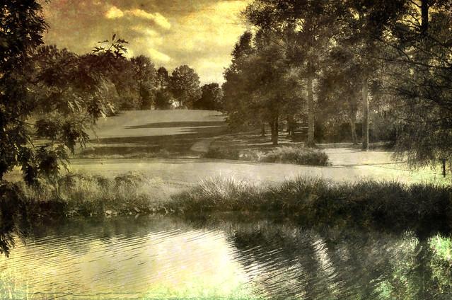 Hershey's Mill Landscape