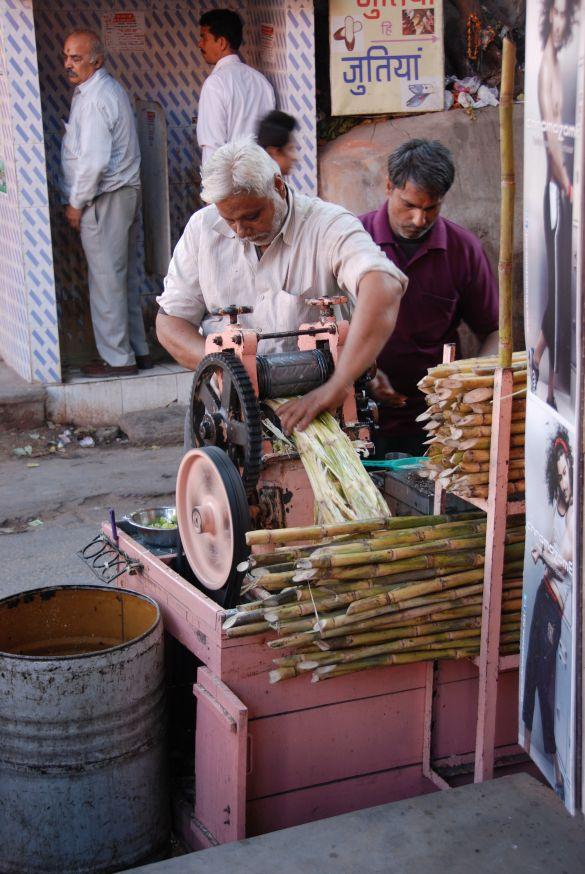 DSC_2710IndiaRajasthanJaipur