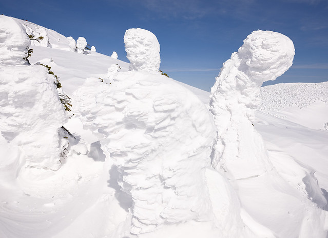 Japanese snow monsters - 3
