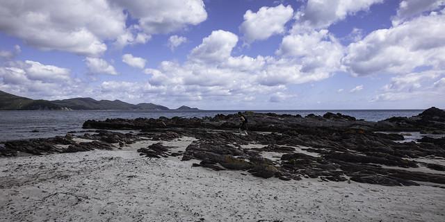 Jen explores the rocky shoreline, walking the Postmans Track, Rocky Cape National Park, Tasmania