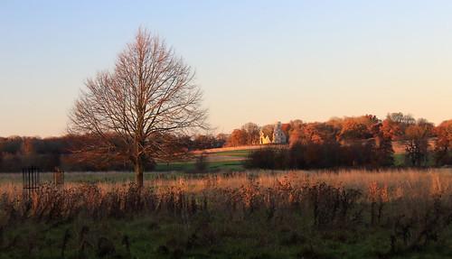 uk greatbritain england sky tree outdoors nationaltrust cambridgeshire wimpole eastofengland canoneos1200d nature field landscape folly goldenhour img1925 kitlens canonefs1855mmiii