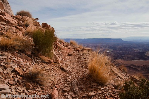 The Lathrop Trail, Canyonlands National Park, Utah