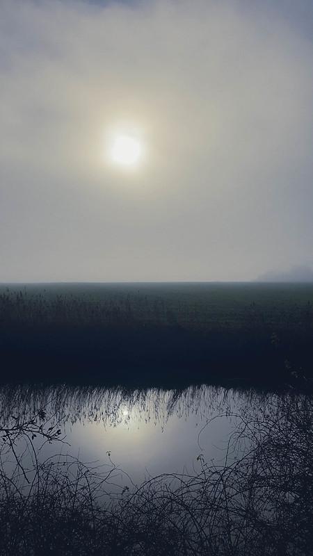 mist komt opzetten langs de IJzer