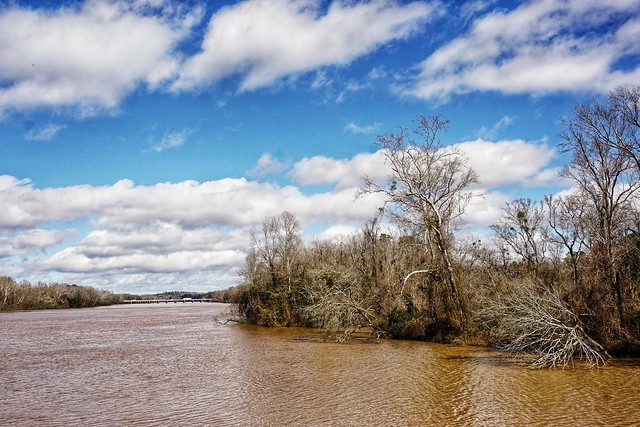 """Heavy Rain for Days Swelling the Broad River"" - (in Explore 2/20/2021)"