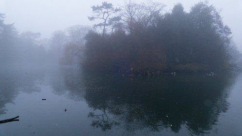 West Park, another misty morning