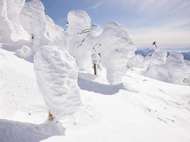 Japanese snow monsters - 2