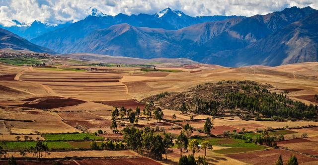 Rural Peru ペルーの田舎 (Explored 19/ii/21)