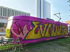Purple Tram