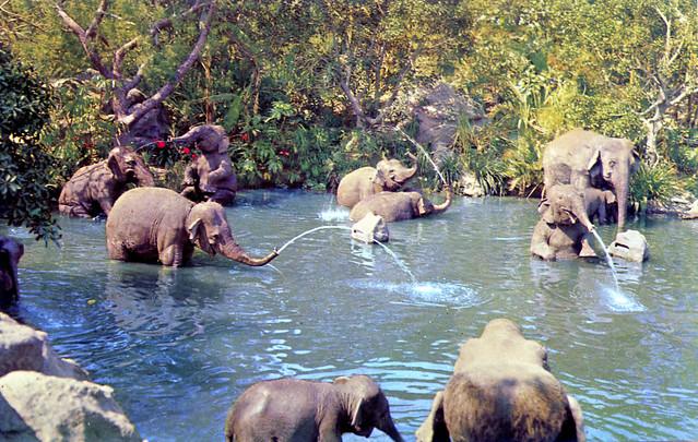 Elephant Bathing Pool Adventureland Disneyland Anaheim CA