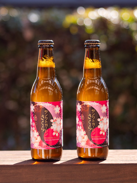 sakura beer