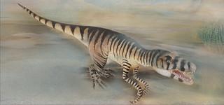 Le Ere Geologiche un viaggio di 500 milioni di anni sui Monti Pisani