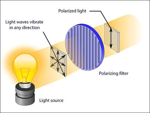 VCSE - Például az izzólámpából érkező fény polarizálatlan: a fénysugarak minden irányba oszcillálnak. Ezt mutatja a szűrő előtti többfelé mutató nyílhalmaz. A tökéletes polarizációs szűrő csak egyféle irányba vibráló fénysugarakat enged át, a többit nem. - Forrás: Sky and Telescope