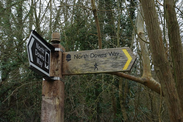 Walking along the North Downs Way between Canterbury and Faversham
