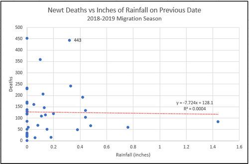 Death-Rain-2018-2019-2