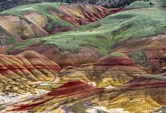 Painted Hills  (由  Hilary Bralove