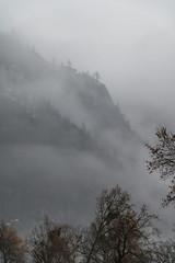 Layers of Yosemite