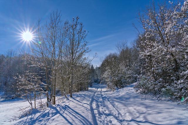 Hiking into Winter Sun