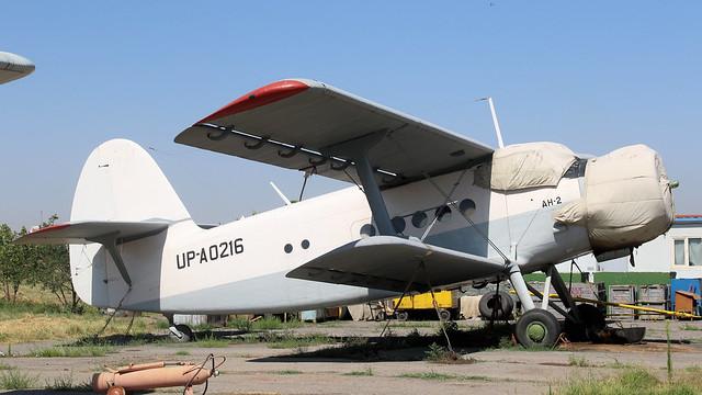 UP-A0216
