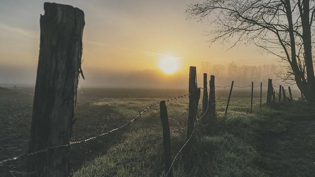 La douceur caressante d'un levé de soleil  en hiver