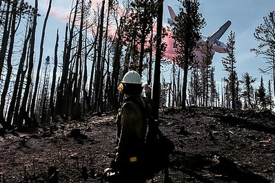 A firefighter in line gear standing  in a burned area with bare, standing snags, watches a plane drop retardant beyond the trees.