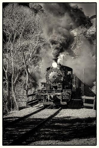 sunolca sunlight railroading sunolvalley landscape railroadtracks fremontca tress nilesrailroad nilecanyon skookum locomotive steamengines fall smoke nilescanyonrailroad