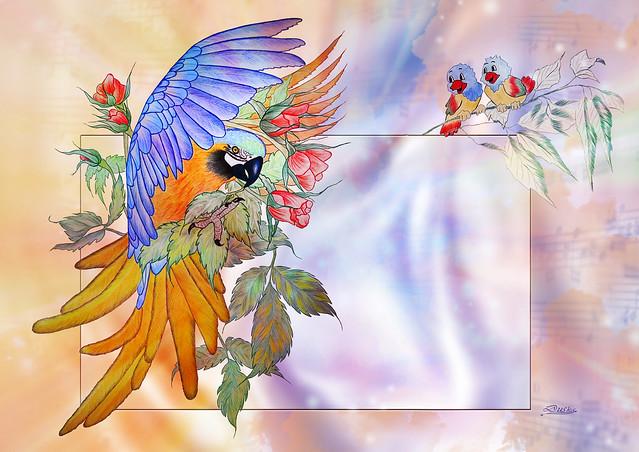 Messenger of roses