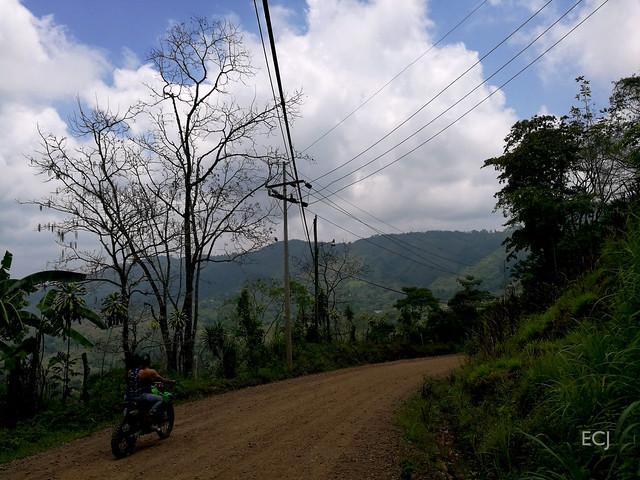 Paisaje y velocidad/ Landscape and speed