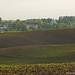 Spring field. Весняне поле