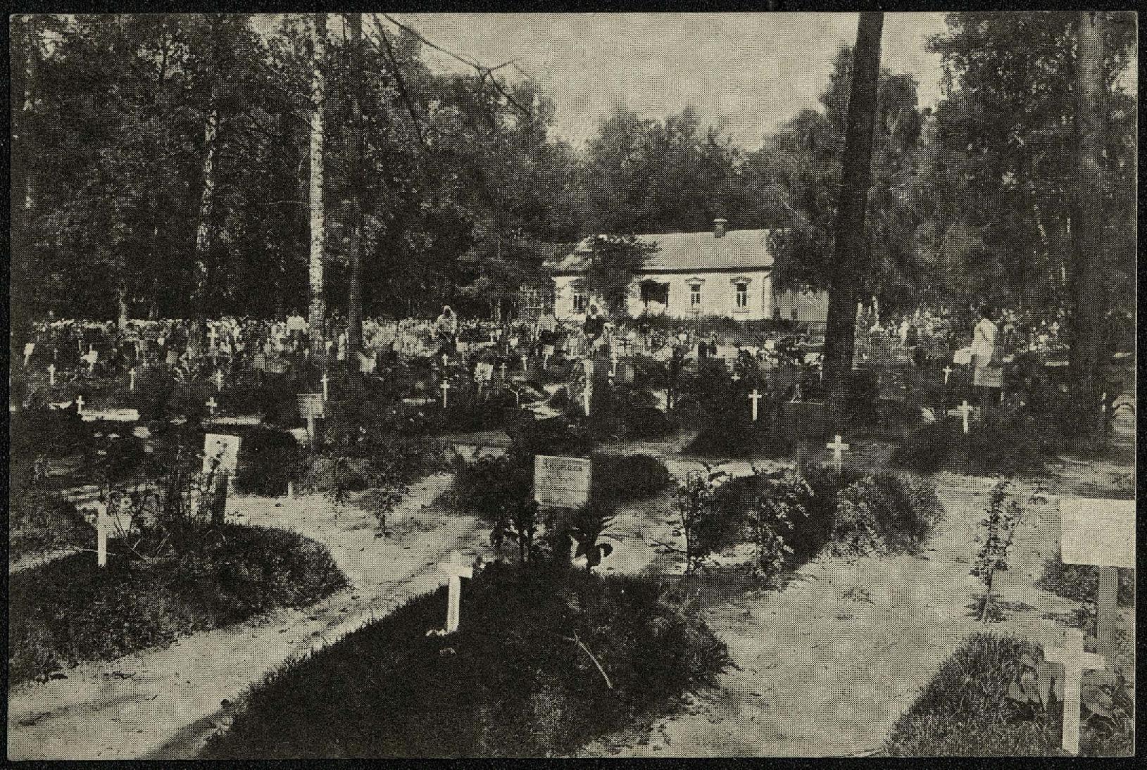 Вид Московского городского Братского кладбища