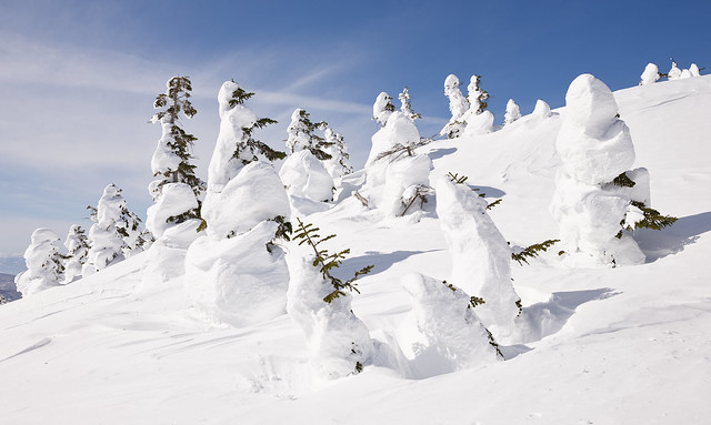 Japanese snow monsters - 6