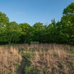 Pine Bend Bluffs SNA - Minnesota