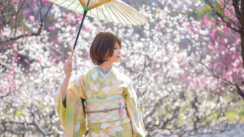 Spring Colors of JAPAN