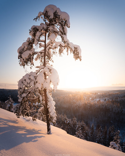suomi finland jyväskylä vaajakoski kanavuori vuori mountain tree snow lumi ice cold evening sunset landscape nature auringonlasku talvi sun sky view outdoor nikon d750 sigma 20mm art wideangle forest photography light